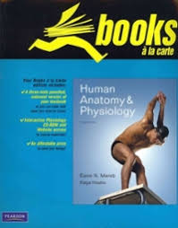 Human Anatomy And Physiology 8th Edition Solved Chapter 10 Problem 22saq Solution Human Anatomy And