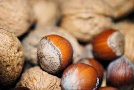 christmas nuts free photo walnuts decoration nuts food christmas hazelnut max pixel