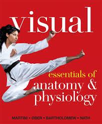 Essentials Of Human Anatomy And Physiology Notes Martini Ober Bartholomew U0026 Nath Visual Essentials Of Anatomy
