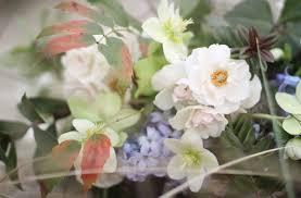 native plants portland oregon spring hart floral