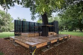 tree x office program in environmental design of
