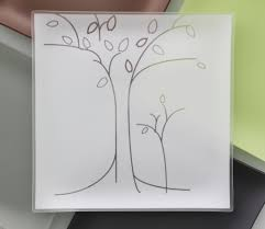 13 trees plates with purpose for casa riverside design