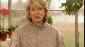 video tips for watering indoor plants martha stewart