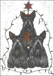 scottie cards scottish terrier cards