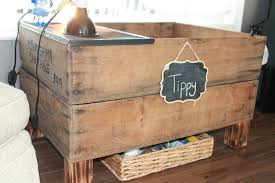 how to build a tortoise table creatively quirky at home meet tippy our red footed tortoise two
