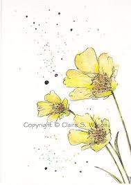 53 best buttercups images on pinterest gardens colors and