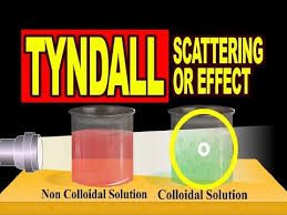the scattering of light by colloids is called tyndall scattering or tyndall effect video explanation youtube