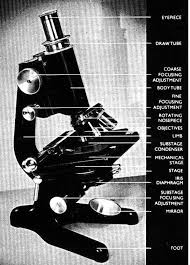 Parts Of A Compound Light Microscope Exe