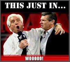 Woo Meme - the 21 funniest ric flair memes for wrestling fans