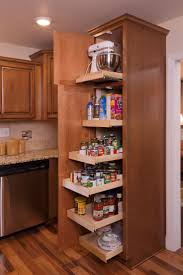 Kitchen Pantry Shelf Ideas by Best 25 Pull Out Pantry Shelves Ideas Only On Pinterest Pull
