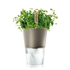 Self Water Pot Self Watering Herb Pot ø 13 Cm By Eva Solo