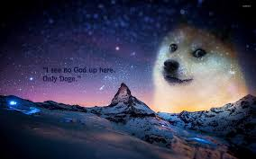 Meme Wallpaper - doge wallpaper meme wallpapers 27299