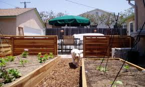 Garden Ideas For Dogs Simple Ways To Create A Friendly Garden Care2 Healthy Living