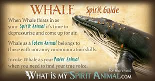 whale symbolism meaning spirit totem power
