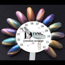 asian nail supply pro art cosmetics magnet chameleon nail polish
