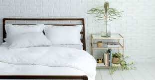 best plants for bedroom plants to put in your bedroom for better sleep jersey demic