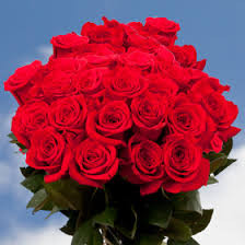 global roses birthday roses global
