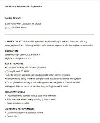 sample data entry resume hitecauto us