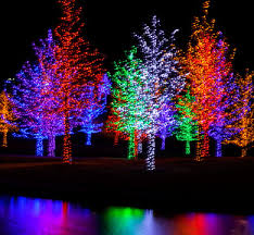 Christmas Decorations Light Projection by Qvc Christmas Lights Projector Learntoride Co