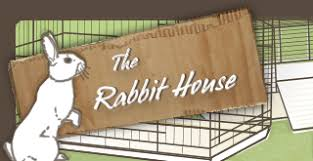 Diy Indoor Rabbit Hutch How To Build A Rabbit Cage Using Cubes Advice For Indoor Rabbits