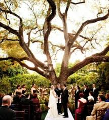 wedding venues in south florida affordable wedding venues in south florida b32 on images