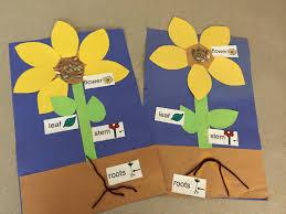april showers u2026bring may flowers mrs costa u0027s preschool at memorial