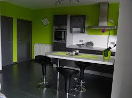 photo cuisine grise et idée déco cuisine grise et verte