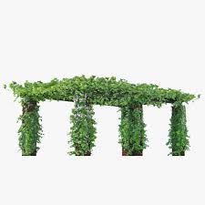 pergola long with climbing rose flowers or ivy like plant 3d model