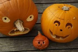 free images orange produce halloween holiday child gourd