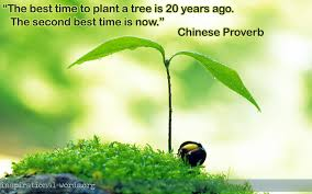 the best time to plant a tree getmotivated