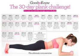Challenge How To Do It Vlad S 30 Day Plank Challenge Page 2
