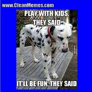 Funny Memes Clean - best 25 ideas about funny clean memes find what you ll love