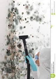 How To Get Paint Off Walls by Professional Cleaning Mould Off A Wall Royalty Free Stock Image