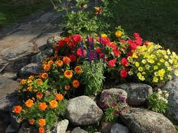 13 best i want a rock garden images on pinterest garden ideas