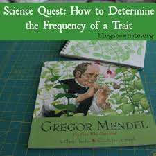 what gregor mendel u0026 growing peas can teach us about heredity