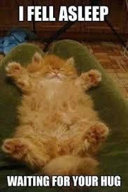 Give Me A Hug Meme - i fell asleep waiting for our hug meme boomsbeat