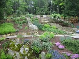 Backyard Slope Landscaping Ideas Triyae Com U003d Terraced Backyard Slope Various Design Inspiration
