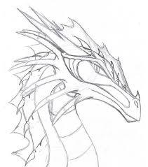 25 dragon drawings ideas draw dragons