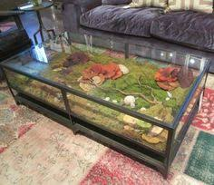 Library Tables For Sale I Want A Coffee Table Display Case For A Library Area To Put My