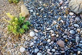 drainage installation u2013 landscaping service myrtle beach u2013 north