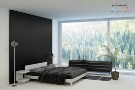 cheap feature wall singapore in bedroom painting combined with