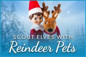 on shelf reindeer reindeer the on the shelf