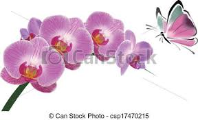 orchid and butterfly orchid butterfly bubbles and clipart
