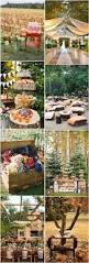 Outdoor Fall Decorations by Best 20 Outdoor Fall Parties Ideas On Pinterest Eclectic Picnic