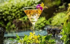 recipes u0026 mixology koloa rum company