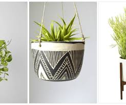 best photo glass wall planters as big plants indoor refreshing
