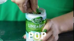 How Much Is A Case Of Bud Light Lime A Rita