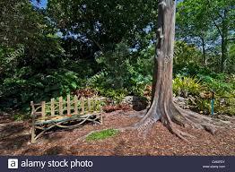fairchild tropical botanical gardens at coral gables a suburb of