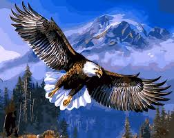 eagle home decor hq eagle soaring home decor no frame digital painting picture by