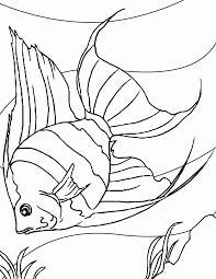 coloring pages tropical kids coloring